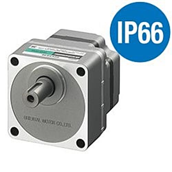IP66 BL5 motor